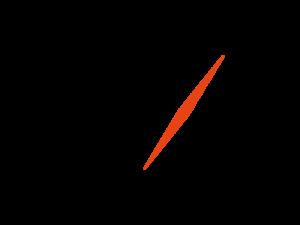 Logo des Unternehmens Nuernberg Messe